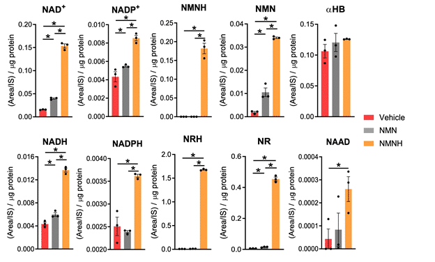 NMNH increases the cellular NR and NRH levels (Zapata-Pérez et al. 2019)